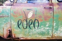 Eden Gardens & St Ives - 7 Feb 2021